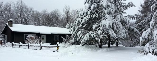 bkg-blue-mountain-rest-winter-trees