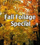 Fall Foliage Special