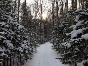 Blue Mt. Rest - snowmobile trail